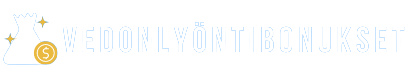 vedonlyontibonukset.io logo